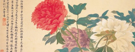 Transgendering of the Peony in East Asia