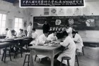 Anatomy, Power &amp; Scientific Language in China