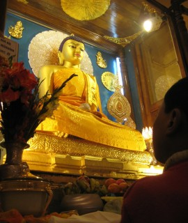 Worshipper_at_Mahabodhi_Temple_Bodh_Gaya_India